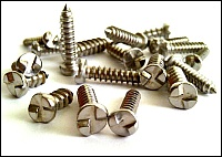 Number plate security screws.